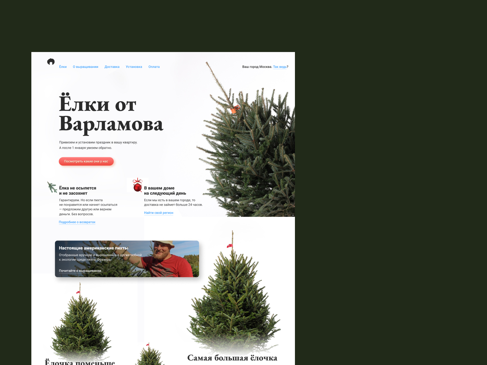 Landing page for the Christmass tree store